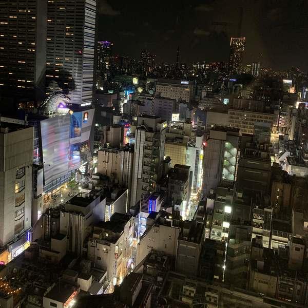 新宿プリンスホテル歌舞伎町景色夜